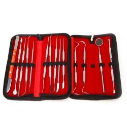 14er Dental Zahnpflege Zahnreinigung Zahnsteinentferner Zahninstrumente
