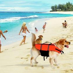 Hundeschwimmweste Hundeweste Schwimmtraining für Hunde Orange Gr. L