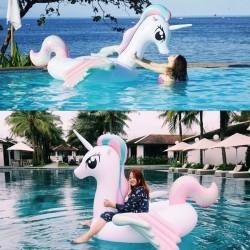 Schwimminsel Schwebebett Luftmatratz Schwimmtier Sofa Pferd 120cm