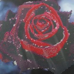 5D Diamant Painting Full Kits Handwerk Stickerei Kreuzstich für Haus